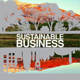 CSR & Impact Assessment