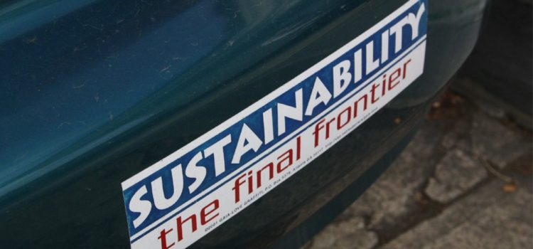 Promoting Sustainability in Education