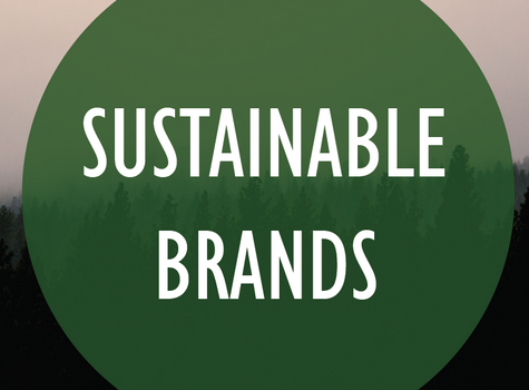 Business & Sustainability Part II – Sustainable Brands